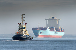 The tug Switzer Bootle escorts the container ship, Maersk Lota as she steams upriver on the River Thames.