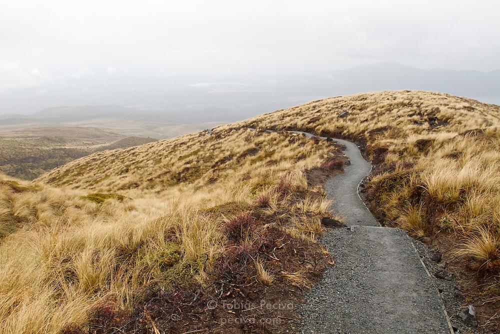 Section of the Tongariro Crossing hiking trail, in Tongariro National Park, New Zealand.