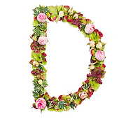 Capital Letter D Part of a set of letters, Numbers and symbols of the Alphabet made with flowers, branches and leaves on white background