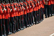 Foot Guards of the Household Division at Trooping The Colour parade, London, United Kingdom