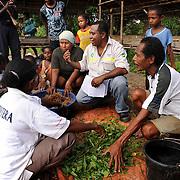 Farming Co Operative , Papua , Indonesia