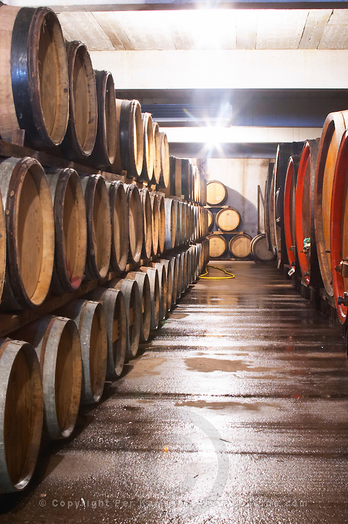Domaine d'Aupilhac. Montpeyroux. Languedoc. Barrel cellar. France. Europe.