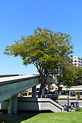 Watson Bridge, a Pedestrian Walkway over Campus Drive, Connecting UCI with University Center Shopping Area