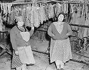 9305-B7380. Edna David (left) and Stella McKinley in a salmon-drying shed, drying fish at Celilo Falls on the Columbia River in Wasco County. The salmon have been stretched on small wooden sticks and hung from poles suspended from the ceiling of the wooden building. 1952.