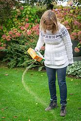 Feeding a lawn with fertiliser