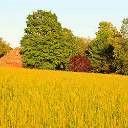 A hay field at Raspberry Farm in Hampton Falls, New Hampshire.