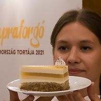 Cake of Hungary 2021 Sunflower created by Sandor Fodor is seen after being announced at a press conference in the house of Parliament in Budapest, Hungary on Aug. 3, 2021. ATTILA VOLGYI