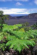 Kilauea Iki, Kilauea Volcano, HVNP, Island of Hawaii<br />