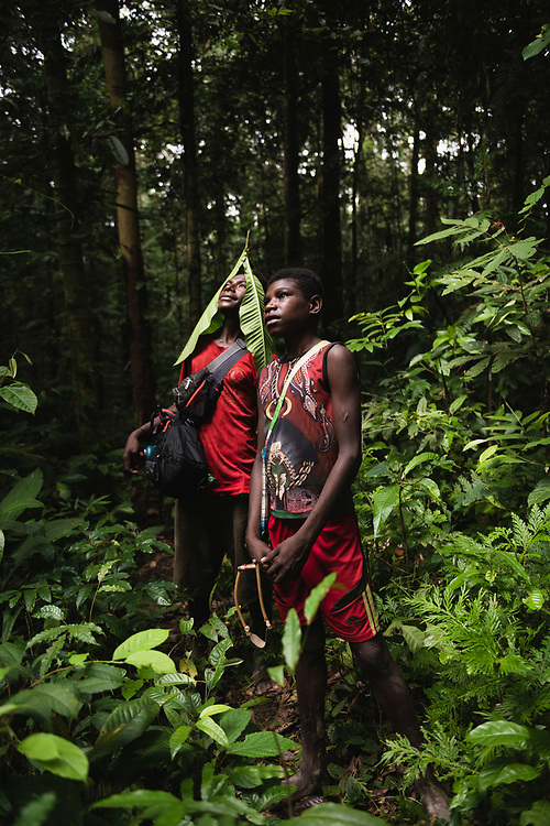 Two boys from the village of Likan in Papua New Guinea's East Sepik Province stand in the rainforest on a hike to a WWII crash site near their village.<br /> (June 21, 2019)