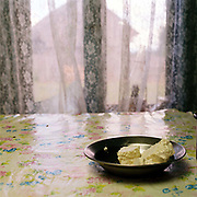 Sheep cheese in a bowl on a table covered with a plastic flowery tablecloth in a stana (sheepfold), Lunca Ilvei, Romania. Each flock of around 500 sheep is based at a stana or sheepfold, a hut in a clearing with a milking enclosure of hurdles. In Romania wool and meat are seen as by-products and the real purpose of the flock is to produce branza or cheese.