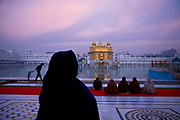 "The Golden Temple at dawn Sikhism's holliest of ""Gudwaras"", places of worship, Amritsar, Punjab, India."
