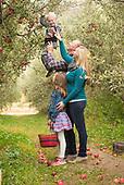 Kellys-Orchard