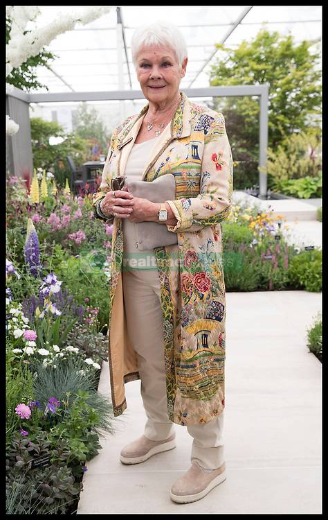 May 20, 2019 - London, London, United Kingdom - Image licensed to i-Images Picture Agency. 20/05/2019. London, United Kingdom. Dame Judi Dench at the launch of the re-elming of the British Countryside  at the Chelsea Flower Show in London. at the Chelsea Flower Show in London. (Credit Image: © Stephen Lock/i-Images via ZUMA Press)