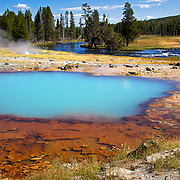 Black Opal Pool with Firehole River in the background at at Biscuit Basin, Yellowstone National Park, Wyoming.