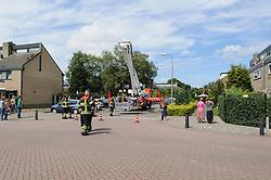 Brandweer inzet kat in nood, Kortenhoef, Wijdemeren, Noord Holland, Netherlands