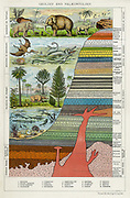 Diagram showing formation of different rocks and evolution of life on Earth. Print published c1880