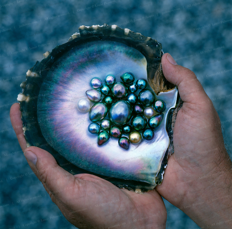A rare collection of perhaps some of the best Tahitian black pearls in the world, hi-graded from a 25-year harvest of 80% of the pearls that come out of Tahiti.