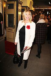 Amanda Redman, Perfect Nonsense - Press Night, Duke of York's Theatre, London UK, 12 November 2013, Photo by Brett Cove © Licensed to London News Pictures. Photo credit : Brett D. Cove/Piqtured/LNP