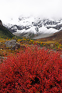 Autumn colours, snow covered mountains and sceneries in the U-shaped valley, Baima Snow Mountain Nature reserve, Yunnan, China