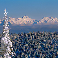 Mountains in Glacier National Park, viewed from a ski area, above Whitefish.