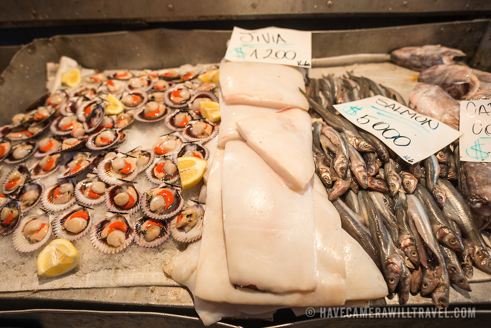 Fresh fish, squid, and scallops for sale at Mercado Central de Santiago, Chile's central market. The market specializes in seafood, a staple food category of Chilean cuisine. The building is topped with an ornate cast-iron roof.