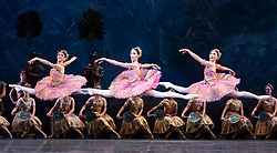 La Bayadere <br />A ballet in three acts <br />Choreography by Natalia Makarova <br />After Marius Petipa <br />The Royal Ballet <br />At The Royal Opera House, Covent Garden, London, Great Britain <br />General Rehearsal <br />30th October 2018 <br /><br />STRICT EMBARGO ON PICTURES UNTIL 2230HRS ON THURSDAY 1ST NOVEMBER 2018 <br /><br />Pas d'action <br />Tall Women <br /><br />Photograph by Elliott Franks Royal Ballet's Live Cinema Season - La Bayadere is being screened in cinemas around the world on Tuesday 13th November 2018 <br /> --------------------------------------------------------------------