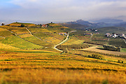 I colori dell'autunno sulle colline di Langa, in Piemonte