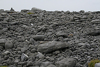 Rocky landscape on Inis Oirr the Aran Islands Galway Ireland
