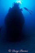divers explore Cayman Salvager wreck, sunk as an artificial reef off Key West, Florida Keys ( Western Atlantic Ocean )