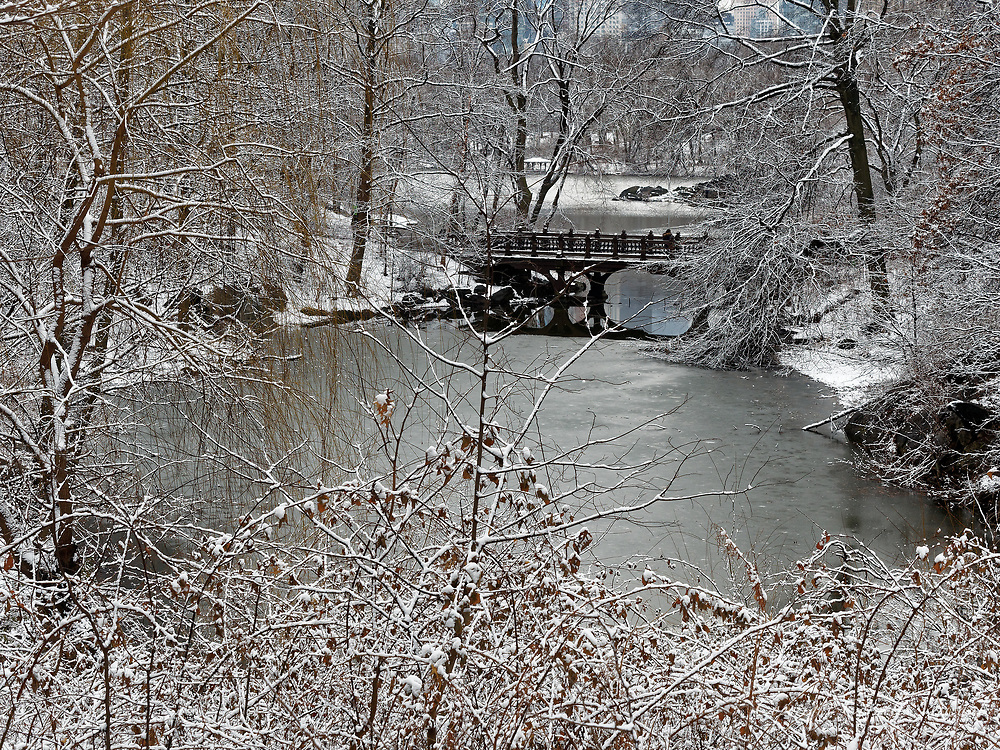 Oak Bridge at the Lake in Central Park during a snow storm