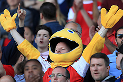 Arsenal fans celebrate after the Premier League match at the John Smith's Stadium, Huddersfield.