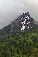Clouds envelop a ridge above Spring foliage on Mount Cheam in the Fraser Valley of British Columbia, Canada