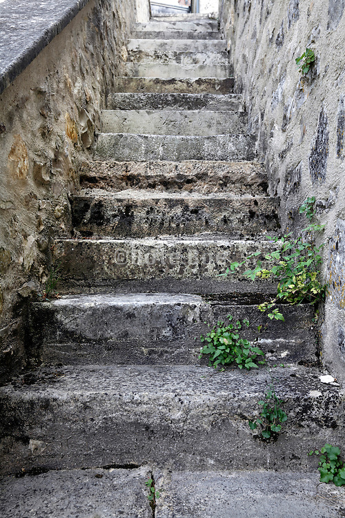old stairs where grasses starting to grow on its steps