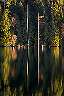 Two dead trees are reflected in the surface of Hayward Lake in Mission British Columbia, Canada