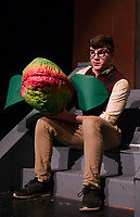 """Riley Alward as Seymour tends to """"Audrey II"""" during dress rehearsal for Little Shop of Horrors at Gilford High School Tuesday afternoon.  (Karen Bobotas/for the Laconia Daily Sun)"""