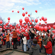 Nieuwe website en ballonnen oplaten Montesorrischool de Gouden Kraal Blaricum