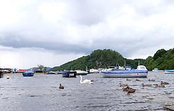 Views of Balmaha, Loch Lomond, Scotland, 31st July 2016<br /> <br /> The bay at Balmaha on Loch Lomond<br /> <br /> (c) Alex Todd | Edinburgh Elite media