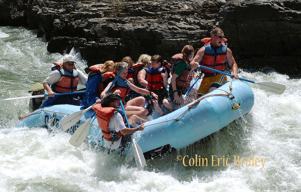 """A man falls overboard as rafters make their way through the """"Lunch Counter"""" rapids on the Snake River in Wyoming. Several commercial river running companies, based near Jackson, Wyoming, make running the Snake River accessible for thousands of adventure seekers each season."""