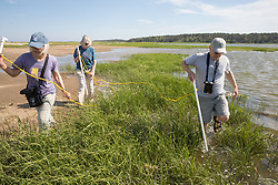 Mary, Judith & Bob On Horseshoe Crab Survey