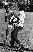Boys Fighting - Port Antonio