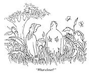 """""""What closet?"""" (a cartoon showing Adam and Eve in the Garden of Eden after having covered their shame with leaves)"""