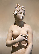 2nd century AD Roman marble sculpture of Aphrodite (Venus), 'Dresden Capitoline Type, copied from a Hellanistic Greek original,  inv 6283 - Farnese Collection, Museum of Archaeology, Italy ..<br /> <br /> If you prefer to buy from our ALAMY STOCK LIBRARY page at https://www.alamy.com/portfolio/paul-williams-funkystock/greco-roman-sculptures.html . Type -    Naples    - into LOWER SEARCH WITHIN GALLERY box - Refine search by adding a subject, place, background colour, museum etc.<br /> <br /> Visit our CLASSICAL WORLD HISTORIC SITES PHOTO COLLECTIONS for more photos to download or buy as wall art prints https://funkystock.photoshelter.com/gallery-collection/The-Romans-Art-Artefacts-Antiquities-Historic-Sites-Pictures-Images/C0000r2uLJJo9_s0c