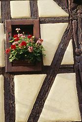 July 21, 2019 - Geraniums In Window Of Half-Timbered House (Credit Image: © Bilderbuch/Design Pics via ZUMA Wire)