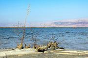 Israel, Dead Sea Panoramic view