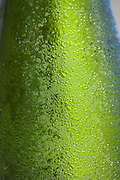Beads of water on a bottle of chilled white wine