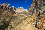 Hiker on the Yukness Ledges Trail above Lake O'hara, Yoho National Park, British Columbia, Canada