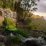 in Lamington National Park, Queensland