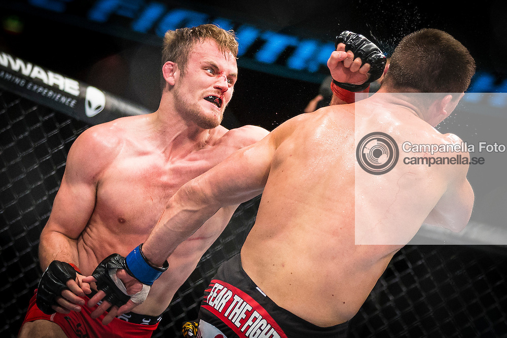 Stockholm 2014-10-04:  <br /> <br /> Gunnar Nelson punches Rick Story durring the main event of UFC Fight Night at the Ericsson Globe Arena.<br /> <br /> (Photo: Michael Campanella / Pic-Agency)