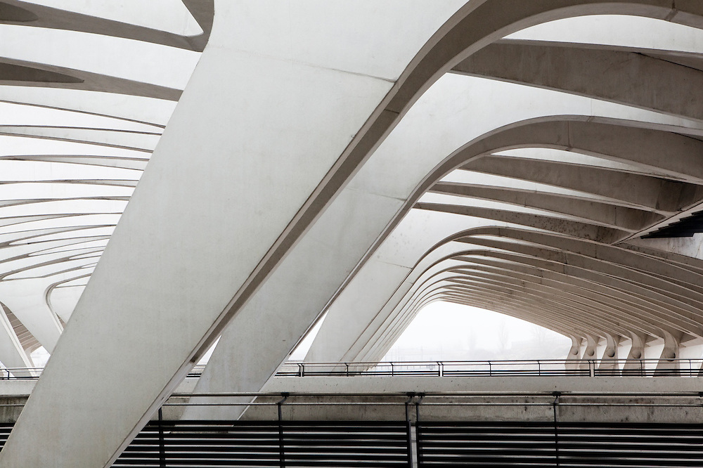 Intricate concrete celling design at the Saint-Exupéry airport railway station in Lyon, France.