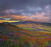 Mount St. Helens National Volcanic Monument, WA.